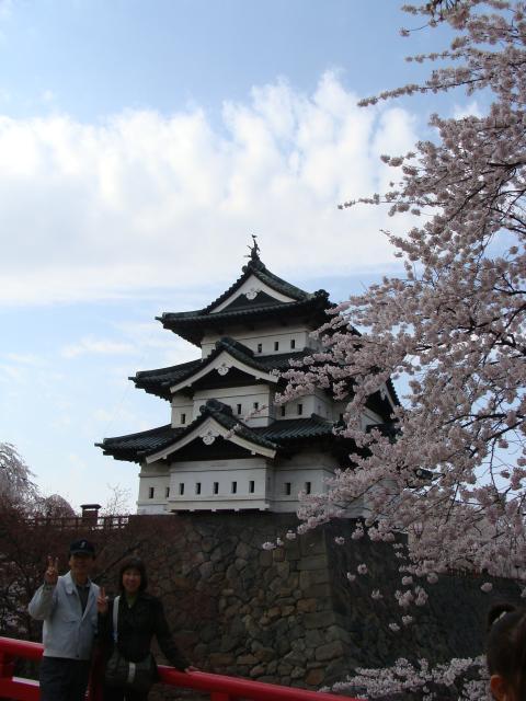 桜祭り2009 橋&弘前城天守&桜